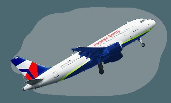 paradise-plane