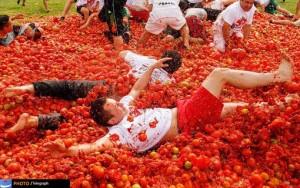 جشن گوجه فرنگی