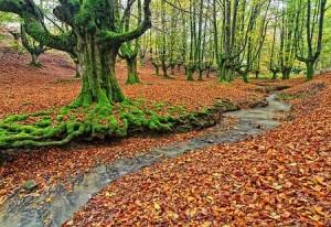 پارکی عجیب در اسپانیا