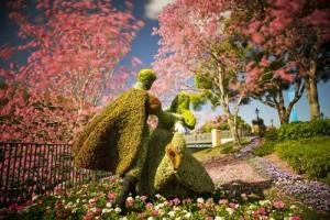 باغ رز تایلند در بانکوک تایلند