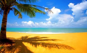 ساحل-آفتابی