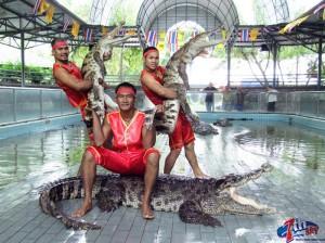مزرعه تمساح در تور تایلند