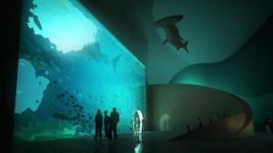 akvarium btomi