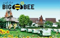 مزرعه زنبورعسل