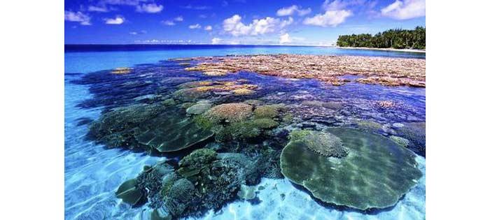 تور تایلند جزیره مرجان ها